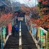秋の秋の宮島、紅葉谷公園と潮が満ちてきた厳島神社(今ごろですが)