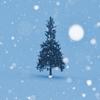 今年はフレッシュクリスマスツリーをリビングに飾ろう!〜木が長持ちする方法〜