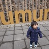 湯村温泉旅行と神戸ルミナリエ