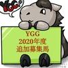 YGG2020年度(19年産世代+α)追加募集募集馬一言評価