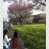 小1と年中姉妹の帰省しない春休み。のんびりすごした記録と食べたもの。