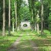 ゲッティンゲンの森を行く 2