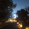 天王寺動物園、夏のナイトZOOに行ってきました!