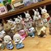 並べられるウサギたち