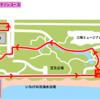 稲毛オータムマラソン