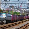 6月4日撮影 東海道線 平塚~大磯間 貨物列車撮影 ② いつもの所でいつもの4本!(^^)!
