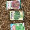 結局小松菜、ほうれん草、サニーレタスを植えました