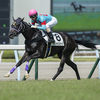 栗東入厩馬と今週出走予定馬です。