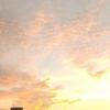 美しい朝♪