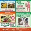 令和一発目 足圧体験スペシャルイベント☆ in猪倉温泉