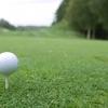 プロゴルファーの影響力