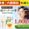 【茶流痩々】農林水産大臣賞受賞の国産プーアール茶