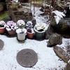 今シーズンの初積雪