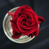 ベルベットの花