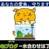 水合わせ方法 危険!水槽に生体(メダカ、金魚、熱帯魚、エビ等)を入れる前は慎重に!【アクアリウム初心者向け】
