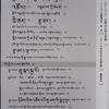 『チベット文学と映画製作の現在 གསེར་ཉ། SERNYA セルニャ』 vol.1 読了