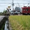貴志川線の踏切 Vol.3