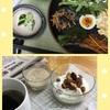 今日の朝食2019/06/24 家庭菜園近況報告