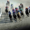 【東海ステークス 2021予想】追い切り・ラップ適性・レース傾向考察 & 各馬評価まとめ / 持久質タイプ多めの瞬発レース