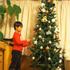 やっとクリスマスツリーを出すことができました