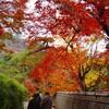京都旅行2007