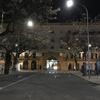 【スペイン】3日目-6 グラナダ~セビリアを長距離バスALSAで移動して「Hotel Pasarela」へ