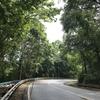 【ランカウイ島】感動するほど酸素濃度の濃い奇跡の山道でハイパーリフレッシュ!【マレーシア後編】