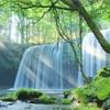 【熊本県の滝シリーズ】幻想的で綺麗すぎる鍋ヶ滝