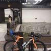 関宿城折り返し149kmライド