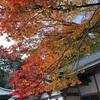 比叡山延暦寺の紅葉🍁
