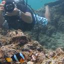 青の洞窟ダイビング マングローブカヤックならWave Marine Club