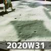 週報 2020W31