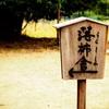 【京都弾丸924】曼珠沙華 孝行せずと ほぞをかむ【落柿舎】