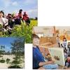 〈information〉SUMMERキャンプ 参加学生募集中
