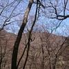 3月最終週末は奥多摩三山『 三頭山』へ~軽アイゼンデビュー~