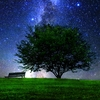 意外と深い星座の神話。面白いものから悲しい物までオススメの神話4選!