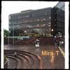 神奈川県民ホール 6/21 THE ALFEE