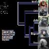 類人猿はどこから「ヒト」なのか? (分類編)