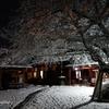 雪の東寺(教王護国寺)