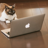グノシーCM!家で無線LAN(Wi-Fi)を使っている時にやってはいけないこと!!