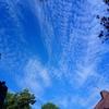 鱗雲とスケボーと