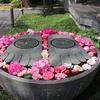 【YouTube 更新】鎌倉いいね。長谷寺の花まつりと春の花と。