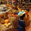 最近かぼちゃがよく売っています