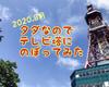 タダなので札幌テレビ塔に登ってみた話