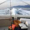 屋久島ジギングでカンパチ!(その2)泳がせ釣り編【船釣り】