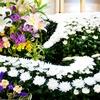 花が教えてくれること。亡くなったあの人がここにいる。