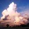 PETM=暁新世―始新世境界温暖化大イベント
