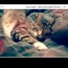 MacのQuick Lookを便利にするプラグイン
