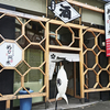 札幌駅北口酒場 めしと純米 / 札幌市北区北9条西4丁目