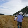 夏の子連れ北海道旅行を計画するなら